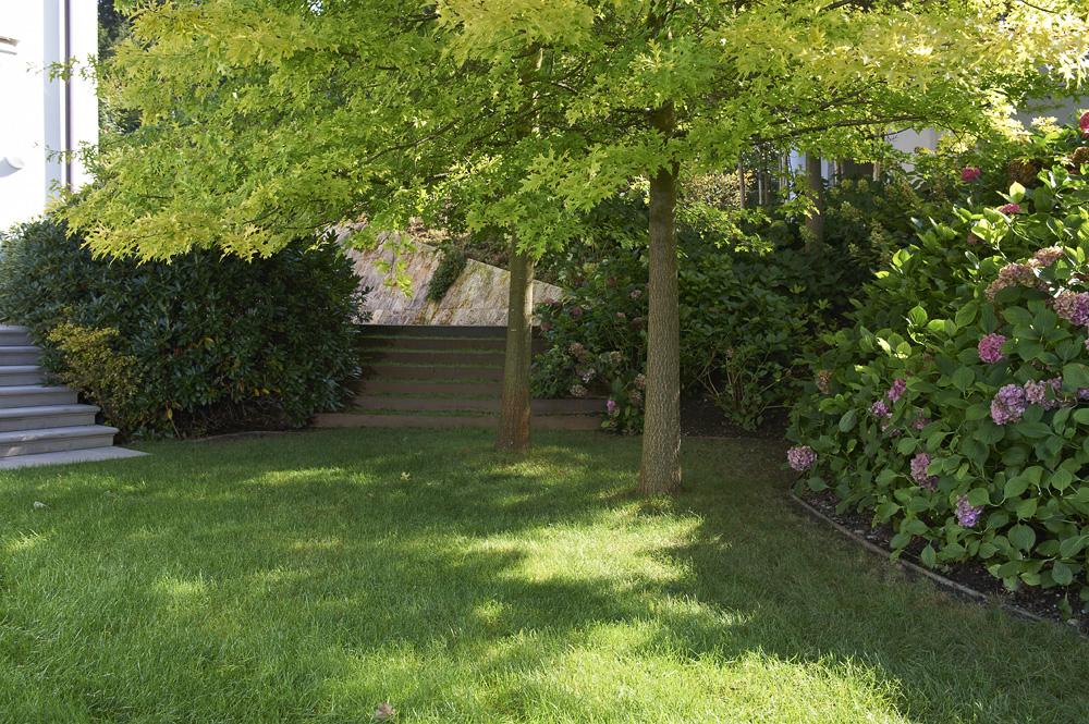 Hortensien - Blütenwunder im Garten - Tanner Gartenbau AG