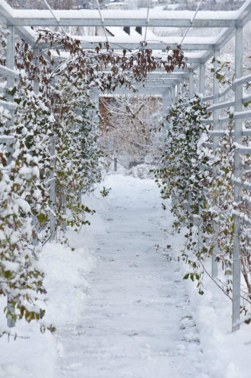 Winterdienst tanner gartenbau ag - Winter gartenbau ...